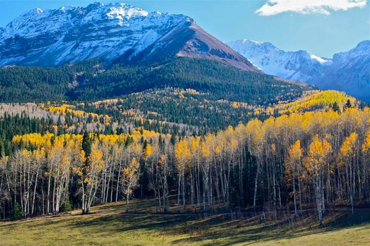 Telluride Real Estate - Wilson Mesa